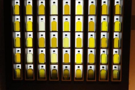 Los colores del aceite de Baena en el Museo del Olivar. / DOB