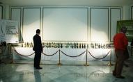 La Exposición de Nuevos Diseños del AOVE volvió a convocar la atención de los visitantes.