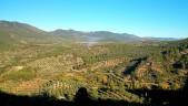 Prespectiva de la Sierra. / O